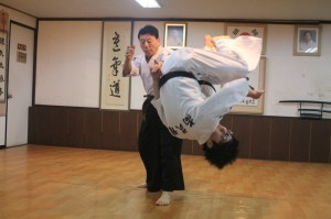 hankido throw - World Hanki Martial Arts Federation